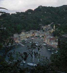 La vista su Portofino