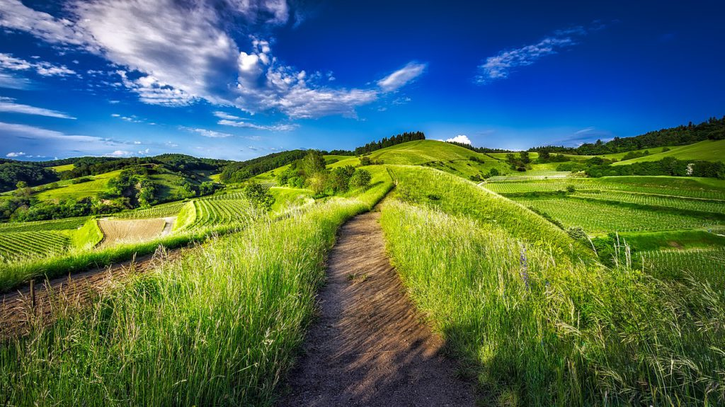 Attenzione all'ambiente significa aumento della reputazione positiva di un territorio