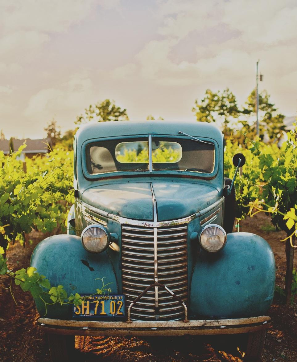 Festa delle Donne del Vino: vino, donne e motori (ph Cayton Heath)