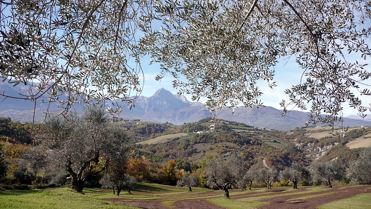 Festa delle Donne del vino 2017 in Abruzzo