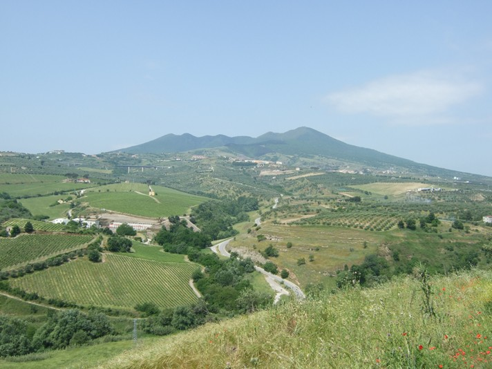 Vini della Basilicata: 4 vignaiole per 4 vini