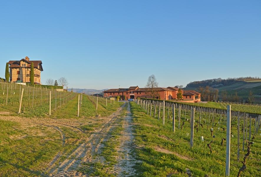 Percorsi Divini: Grape's Road di Tenuta Carretta