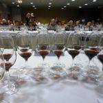 Il Vinitaly delle Donne del Vino dedicato ai vitigni autoctoni
