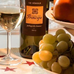 Pallagrello, vitigno antico della Campania