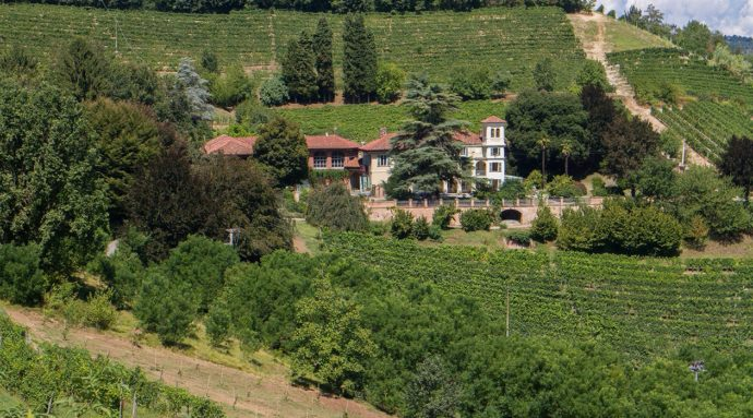 Freisa, vino del Piemonte raccontato da Valeria Gaidano