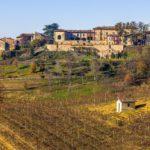 Grignolino: vino autoctono del Piemonte