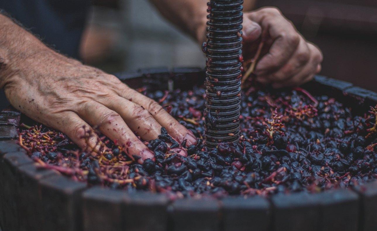 Progetto sul bere consapevole in Toscana