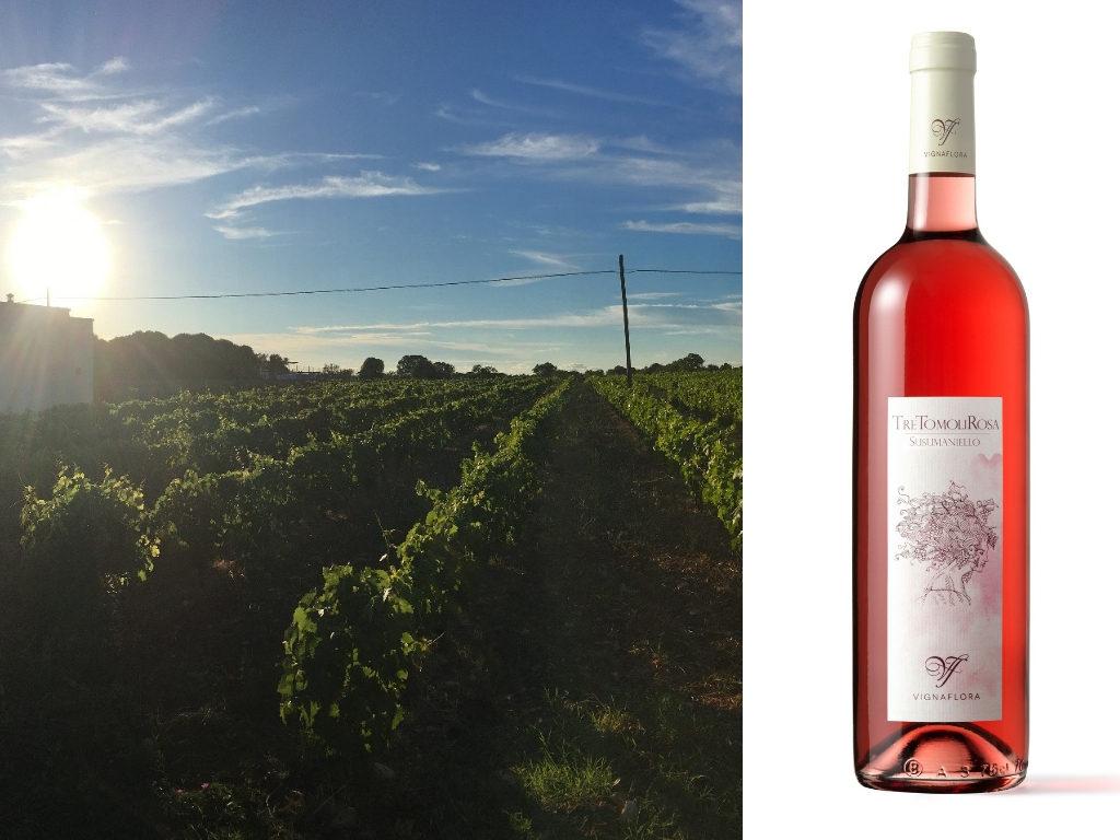 Susumaniello: il vitigno raccontato da Filomena Saponari