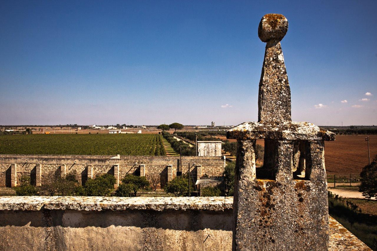 Negroamaro rosato, un vino dal Salento occidentale