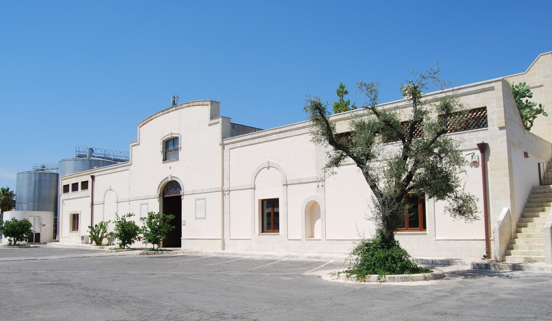 Primitivo di Manduria, vino della Puglia